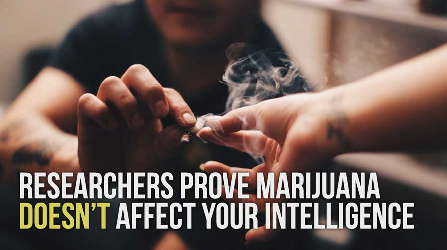 Researchers Prove Marijuana Doesn't Affect Your Intelligence