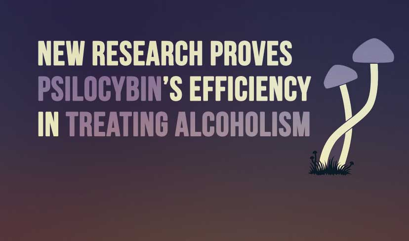 New Research Proves Psilocybin's Efficiency in Treating Alcoholism