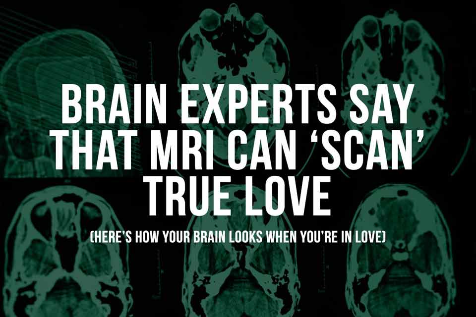 Brain Experts Say That an MRI Can 'Scan' True Love