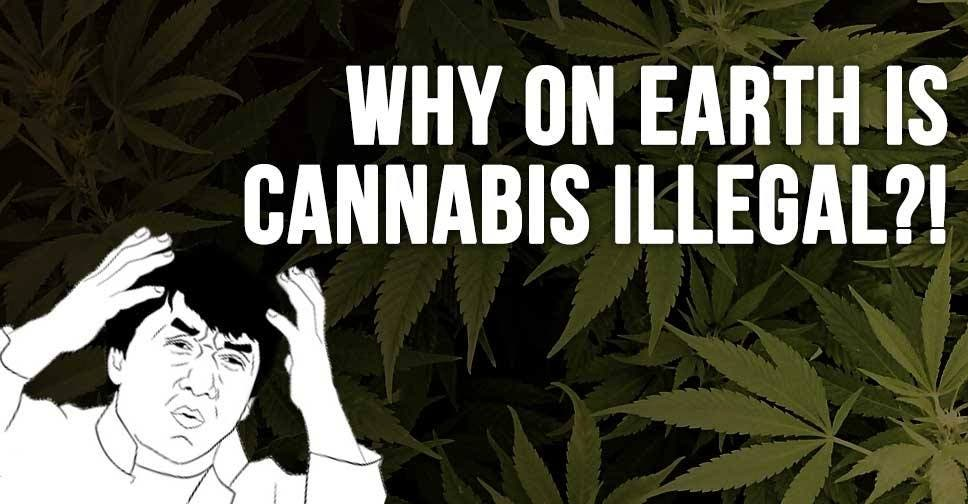 Why On Earth Is Cannabis Illegal?!