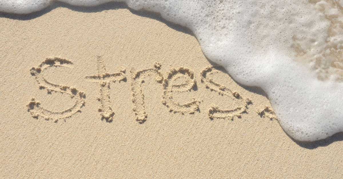 Why You Shouldn't Ever Stress Or Worry