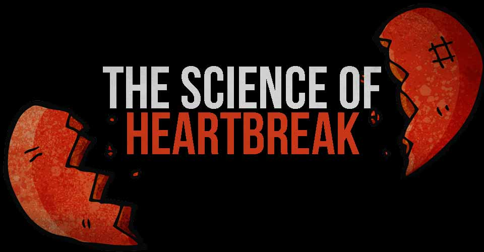 The Science of Heartbreak