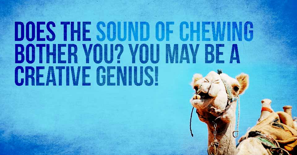 Does The Sound Of Chewing Bother You? You May Be A Creative Genius!