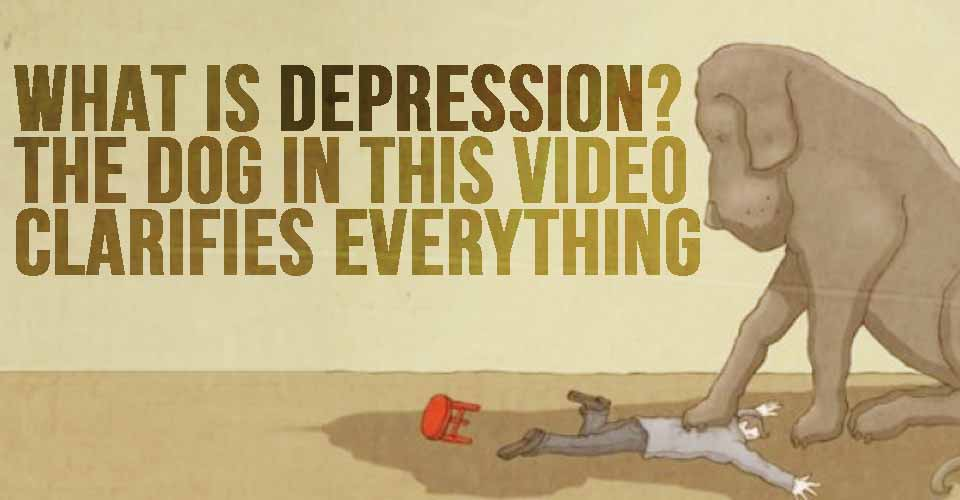 What Is Depression? The Dog In This Video Clarifies Everything