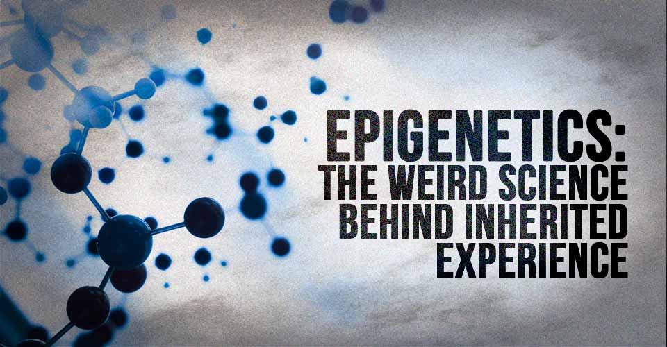 Epigenetics: The Weird Science Behind Inherited Experience