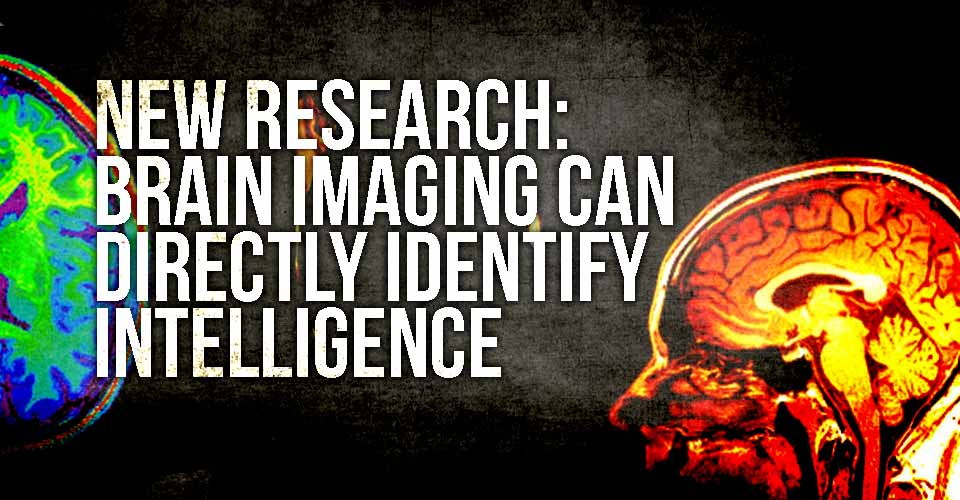 New Research: Brain Imaging can Directly Identify Intelligence