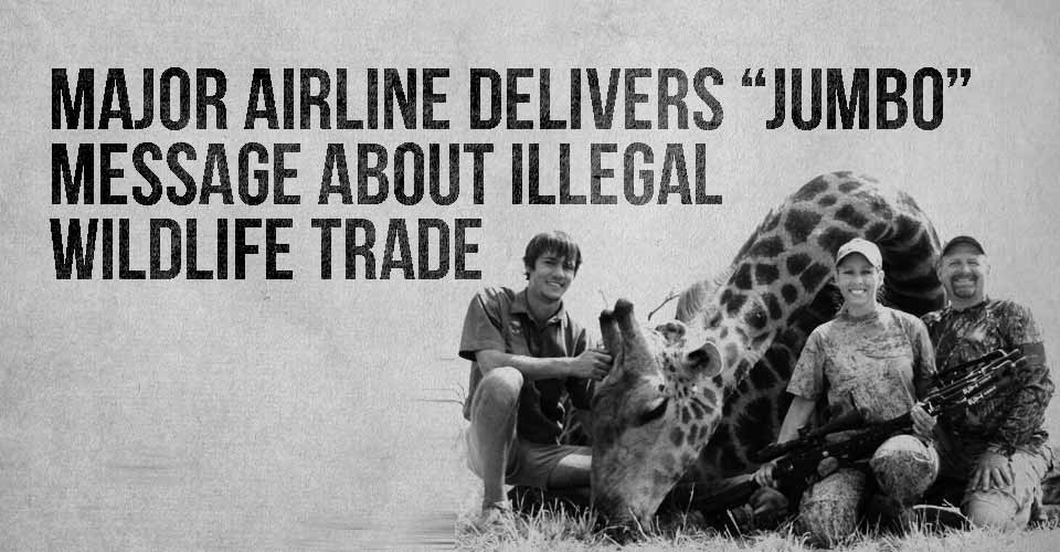 """Major Airline Delivers """"Jumbo"""" Message About Illegal Wildlife Trade"""