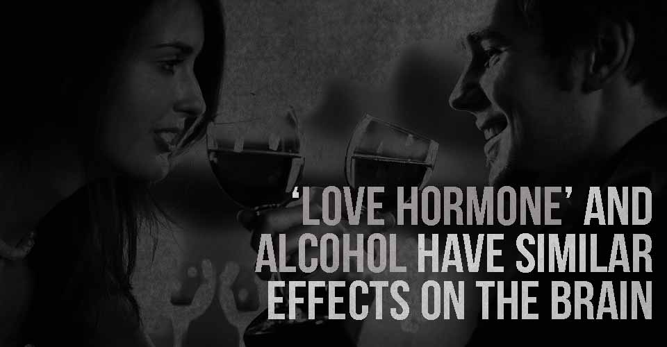 'Love Hormone' And Alcohol Have Similar Effects On The Brain