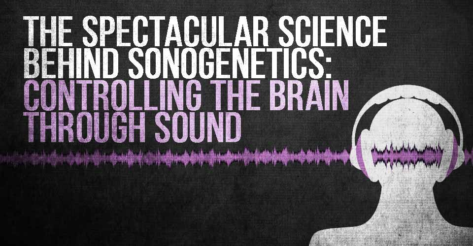 The Spectacular Science Behind Sonogenetics: Controlling the Brain Through Sound