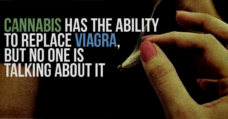 Cannabis has the Ability to Replace Viagra, but No One is Talking About It