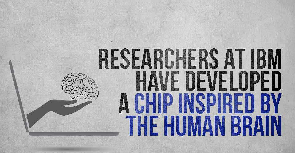 Researchers at IBM Have Developed a Chip Inspired by the Human Brain