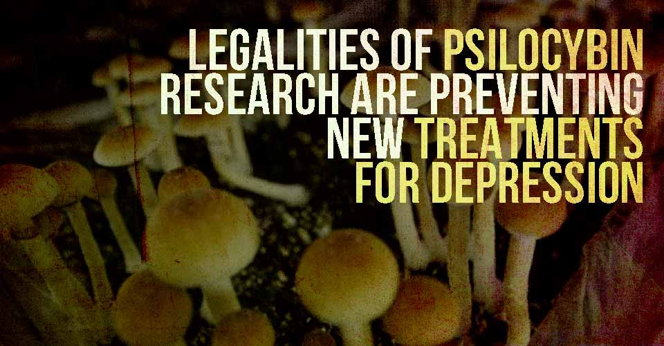 Legalities of Psilocybin Research are Preventing New Treatments for Depression