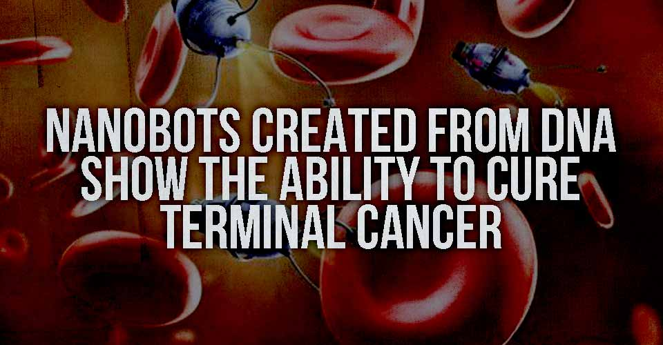 Nanobots Created from DNA Show the Ability to Cure Terminal Cancer