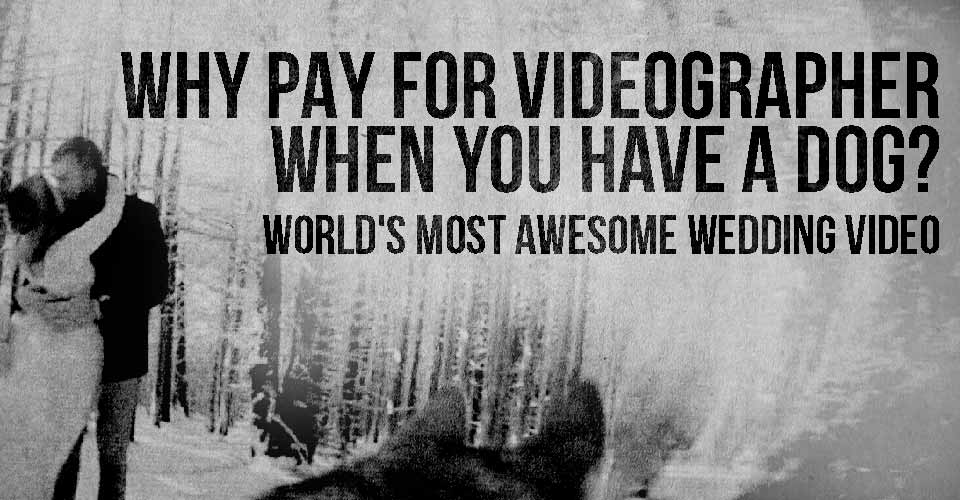 Why Pay for Videographer When You Have a Dog? World's Most Awesome Wedding Video