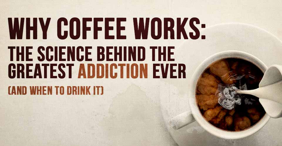 Why Coffee Works: The Science Behind the Greatest Addiction Ever (and When to Drink It)