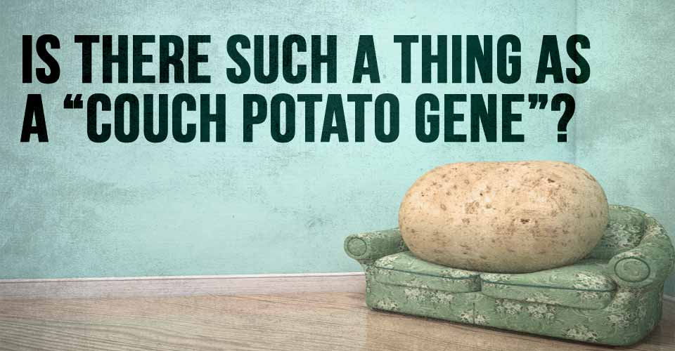 "Is There Such a Thing as a ""Couch Potato Gene""?"
