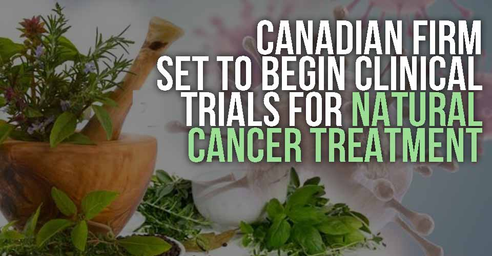 Canadian Firm Set to Begin Clinical Trials for Natural Cancer Treatment