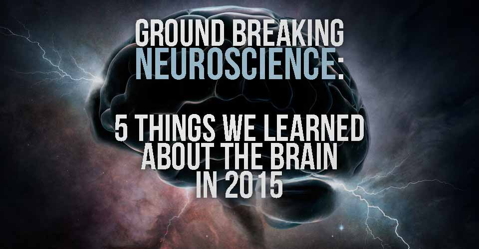 Ground Breaking Neuroscience: 5 Things We Learned about the Brain in 2015