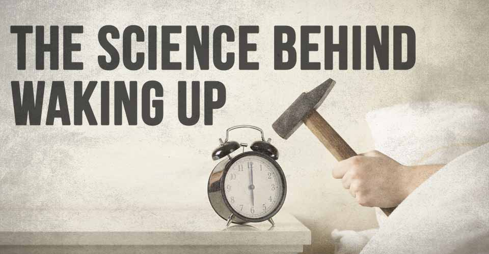The Science Behind Waking Up