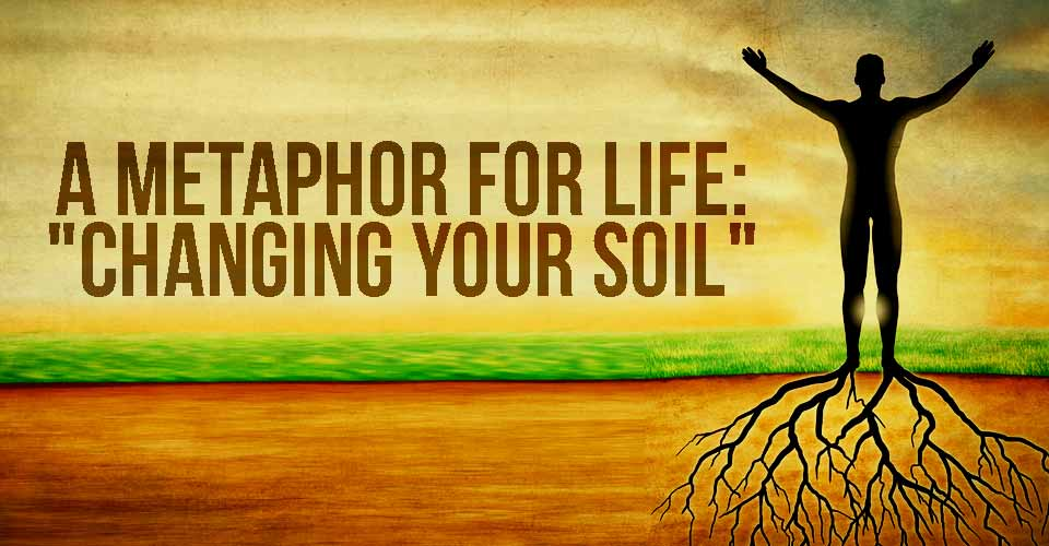 "A Metaphor for Life: ""Changing Your Soil"""