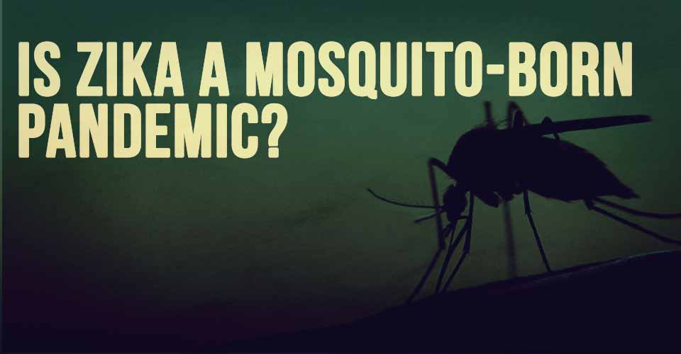 Is Zika A Mosquito-Born Pandemic?
