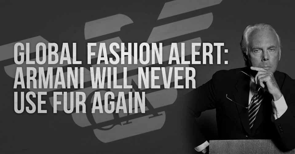 Global Fashion Alert: Armani Will Never Use Fur Again