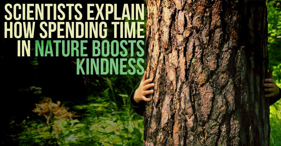 Scientists Explain How Spending Time In Nature Boosts Kindness