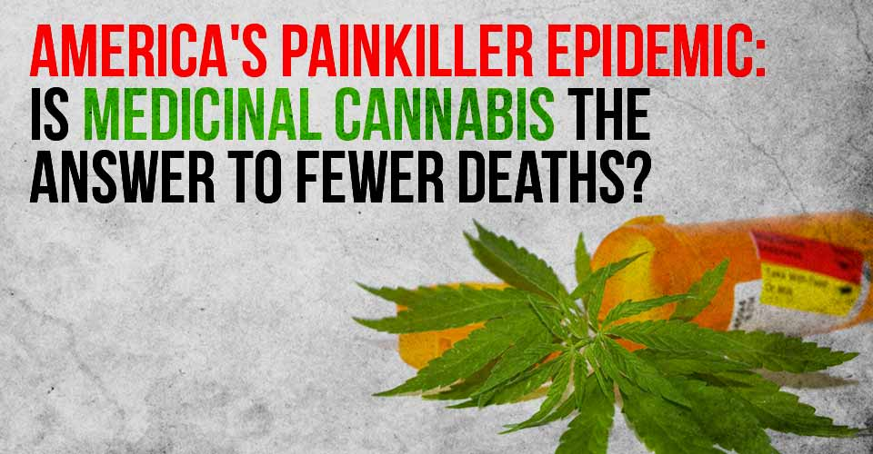 America's Painkiller Epidemic: Is Medicinal Cannabis The Answer To Fewer Deaths?