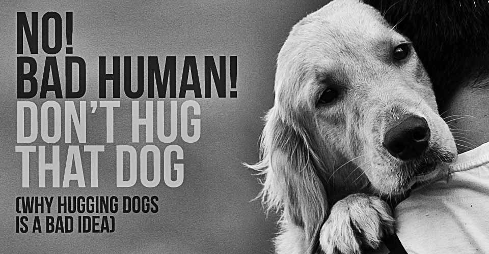 NO! Bad Human! Don't Hug Your Dog!