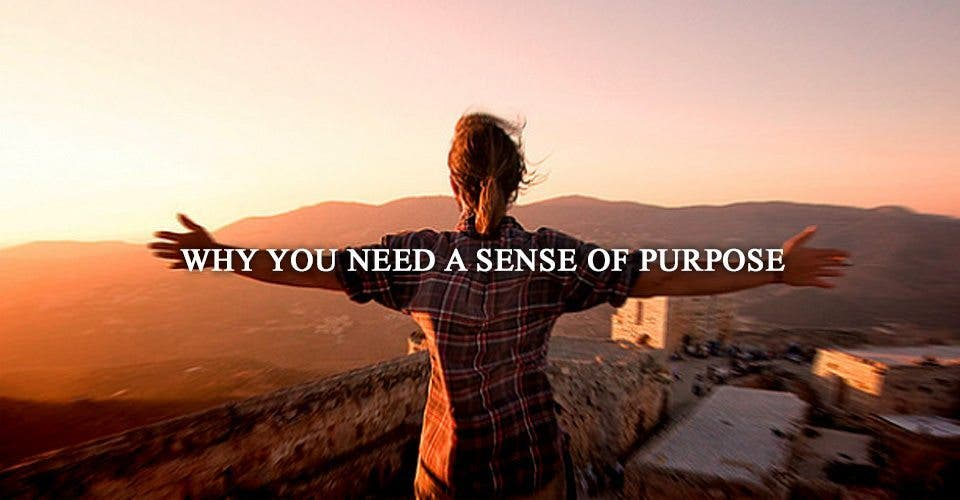Why You Need a Sense of Purpose