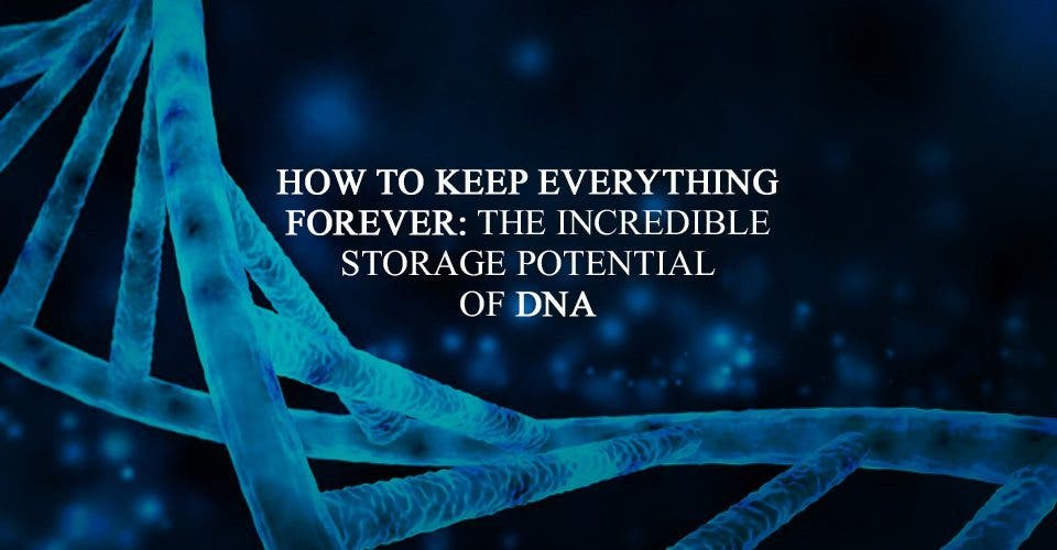 How To Keep Everything, Forever: The Incredible Storage Potential Of DNA