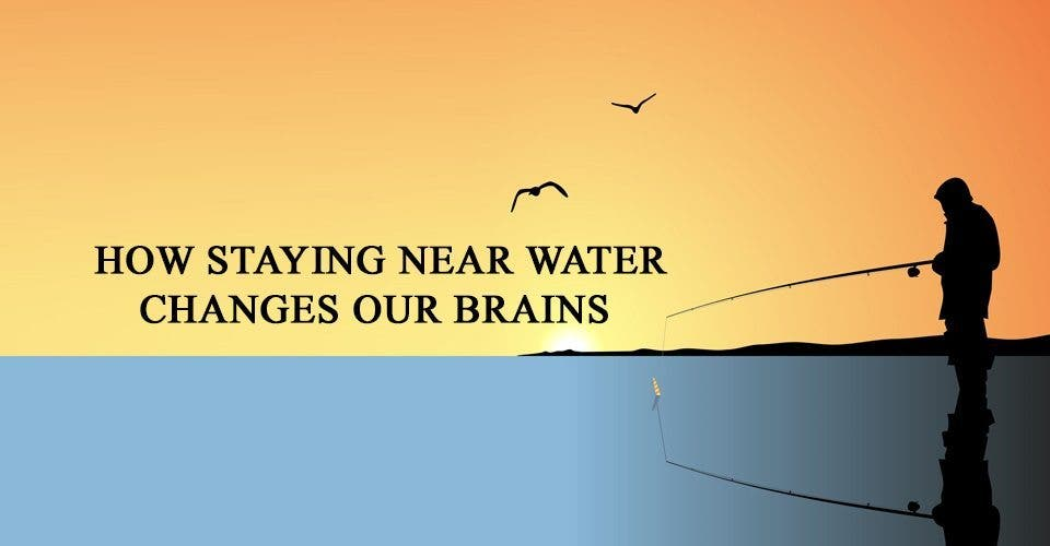 How Staying Near Water Changes Our Brains
