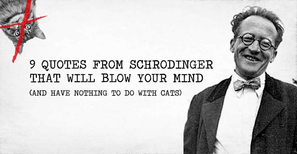 9 Quotes From Schrodinger That Will Blow Your Mind (and have nothing to do with cats)